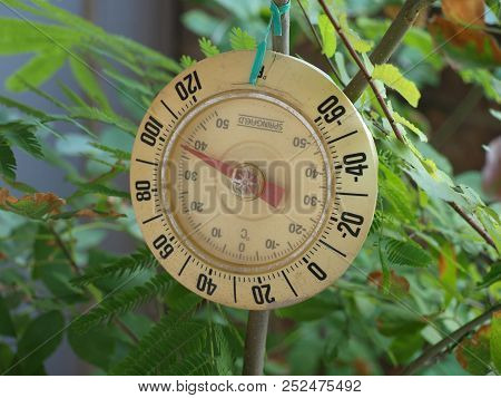 Heat Stress For Potted Trees Is Measured By A Simple Old Thermometer That Points To A Level Where St