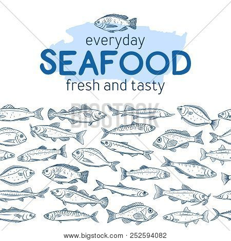 Seamleess Border Hand Drawn Fish. Seafood Background With Bream, Mackerel, Tunny Or Sterlet, Codfish