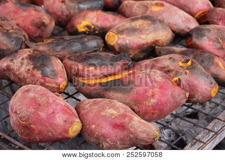 Sweet Potatoes Grill On Stove Is Delicious