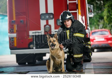 Photo of one fireman squatting next to service dog near fire engine