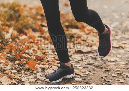 Running On Autumn Road. Road With Autumn Leaves. Sport Uniform. Jog Workout. Wellness Concept. Doing