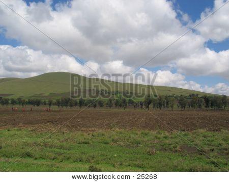 Runde Spitze Hügel 3