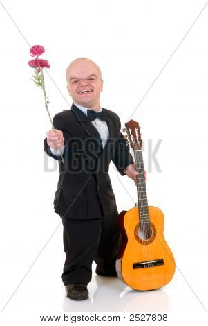 Dwarf, Little Man With Rose
