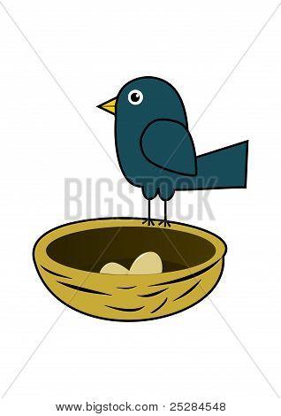 Blue bird in nest