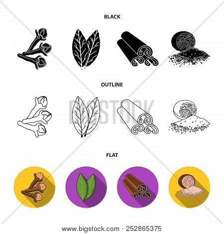 Clove, Bay Leaf, Nutmeg, Cinnamon.herbs And Spices Set Collection Icons In Cartoon Style Vector Symb