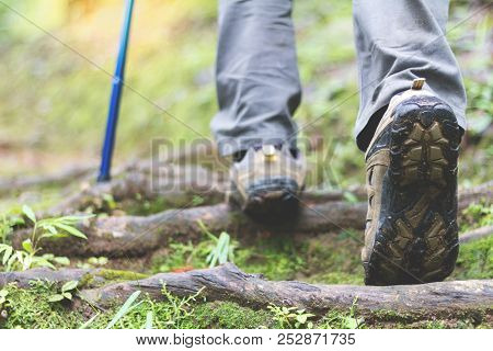 Shoes Man Walking On A Forest Path  And Lifestyle Hiking. Concept Travel Hiking.