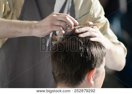 Man Getting Haircut At Barber Shop. Hairdresser Cutting Hair Of Customer At Salon.