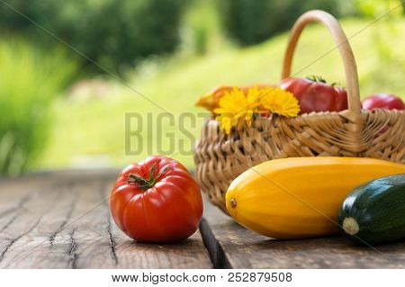 Organic Vegetables, Healthy Nutrition Concept On Wooden Background. Copy Space.