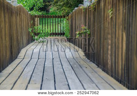 Walking Along Summer's Wooden Garden Walkway