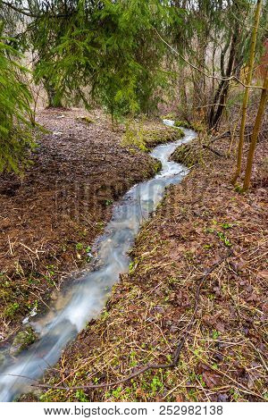 Small Stream Brook In The Spring Forest. Clean Water, Trees And Leaves On The Ground