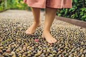 Woman Walking On A Textured Cobble Pavement, Reflexology. Pebble stones on the pavement for foot reflexology poster
