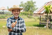Portrait happy mature older man is smiling. Old senior farmer with white beard thumb up feeling confident. Elderly asian man standing in a shirt and looking at camera at rice field in sunny day. poster