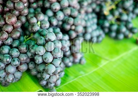Pile Bunch Of Seedless Grapes Put On Banana Leaf For Sale In Thai Fruit Market