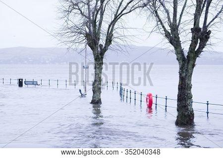 Tree In Deep Flood Water As Sea Flows Deep In Street At Seaside Town Gourock Inverclyde Uk