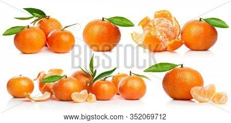 Set tangerine with green leaves. Collection fresh citrus fruit in cut and with clove. Still life and harvest. Isolated on white background.