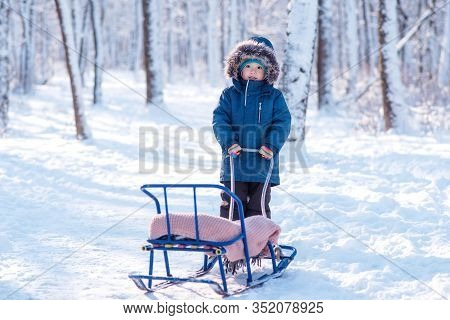Enchanted By Winter: Toddler Boy In Blue Winter Jacket And Hood Standing With Empty Sledge In Snowy