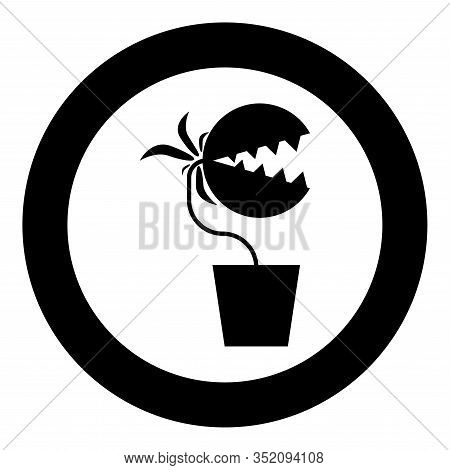 Carnivorous Plant Flytrap Monster With Teeths In Pot Icon In Circle Round Black Color Vector Illustr