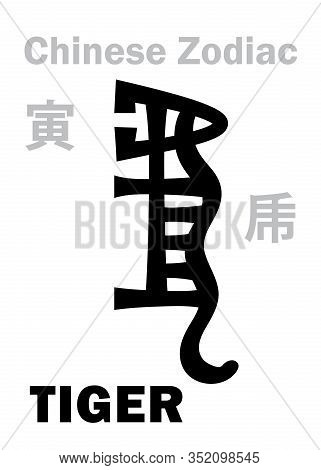 Astrology Alphabet: Tiger -- Sign Of Chinese Zodiac. Also: White Tiger, Legendary Auspicious Beast,