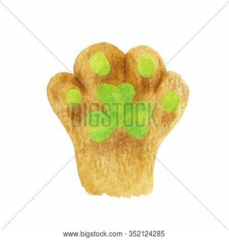 Cats Foot With A Green Shamrock Pad. Hand-drawn Illustration Of A Cat Paw With Watercolor And Colore