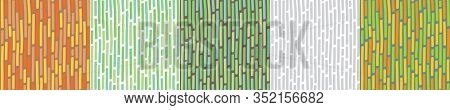 Seamless Background With Vertical Lines. Bamboo Pattern