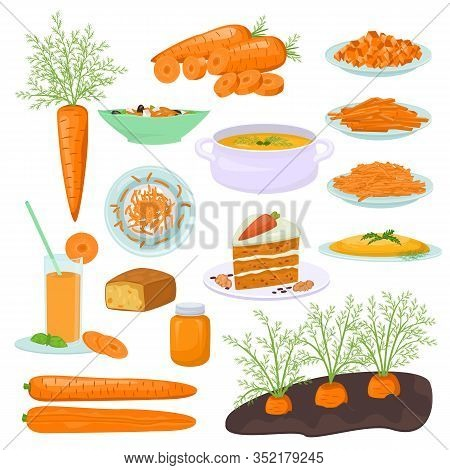 Carrot Food Products Vector Illustration. Dishes Prepared From Carrots, Carrot Cake, Pie, Soup, Sala