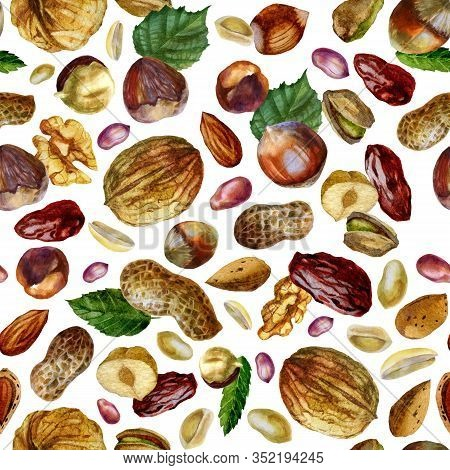 Watercolor Illustration, Walnut Pattern. Peanut. Inshell Peanuts, Peeled Peanuts, Peanut Grains In T