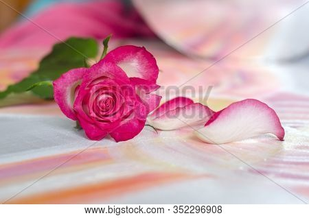 Rose On A Picturesque Canvas Background.