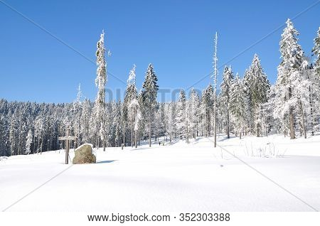 Winter Landscape At Arber Mountain Near Bodenmais,bavarian Forest,germany