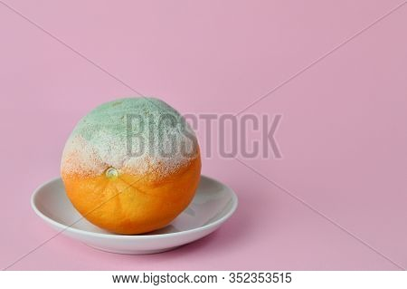 Rotten Orange. Rotten Moldy Orange In A Plate On Pink Background. A Photo Of The Growing Mold. Food