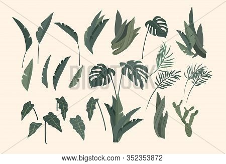 Potted Plants Collection. Urban Jungle, Trendy Home Decor With Plants, Cactus, Tropical Leaves. Set