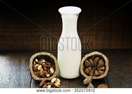 Brazil Nut Milk, Extracted From Pará Nuts, Grown In Brazil And Bolivia. Healthy Milk Of Vegetable Or