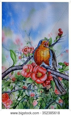 Watercolor Illustration Of A Bird On A Flowering Branch Of Japanese Quince. Spring Song. A Small Bir
