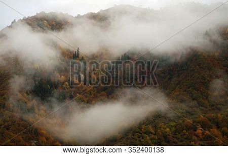 Incredible View Of Mountain With Colorful Forest With Autumn Leaves Covered Partly With Foggy Cloud,