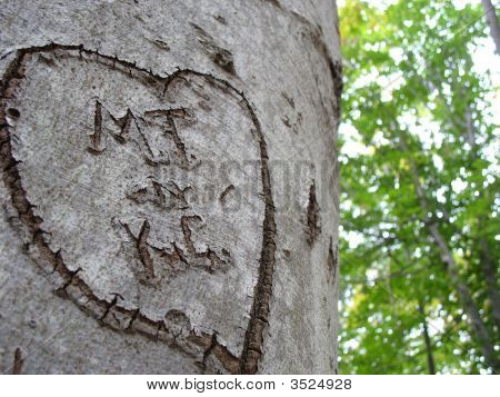 Initials In Tree
