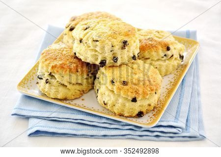 Fresh Baked Golden English Currant Scones On Square Plate On Blue And White Background.  Horizontal