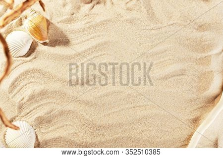 Wavy Golden Sand Of Seashore Backdrop. Cute Sunny Summer Background With Shells And Plants. Empty Co