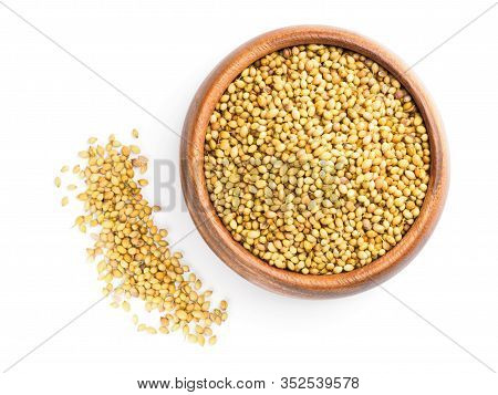 Spice Coriander (coriandrum Sativum) In Wooden Cup And Bunch On White. Diet And Weight Loss Concept