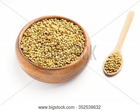 Spice Coriander (coriandrum Sativum) Seeds In Wooden Bowl And Spoon Isolated On White Background. He
