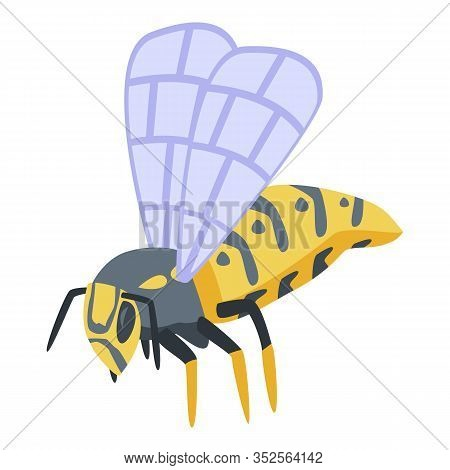 Wasp Icon. Isometric Of Wasp Vector Icon For Web Design Isolated On White Background