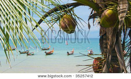An amazing bay on an island