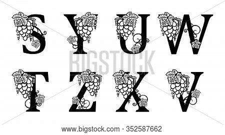 Elegant Wine Logo. Monogram Letters S, Y, U, W, T, Z, X, V. Calligraphic Template Logotype Or Insign