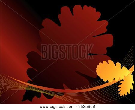 Silhouettes Of Leaves