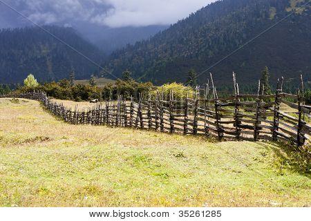 Rural landscape of autumn ranch