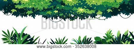 Horizontal Set Of Green Leaves With Lianas Placed On Top Isolated, Jungle Plants On Ground Isolated,