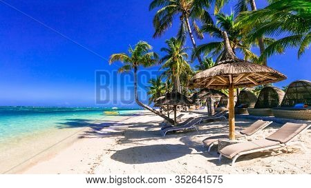 Relaxing tropical holidays. tranquil beach scenery with beach chairs and umbrellas under palm trees