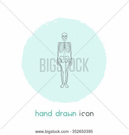 Skeleton Icon Line Element. Vector Illustration Of Skeleton Icon Line Isolated On Clean Background F