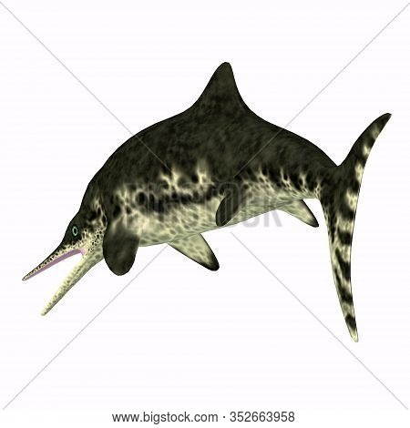 Stenopterygius Ichthyosaur Tail 3d Illustration - Stenopterygius Was An Marine Reptile That Swam In