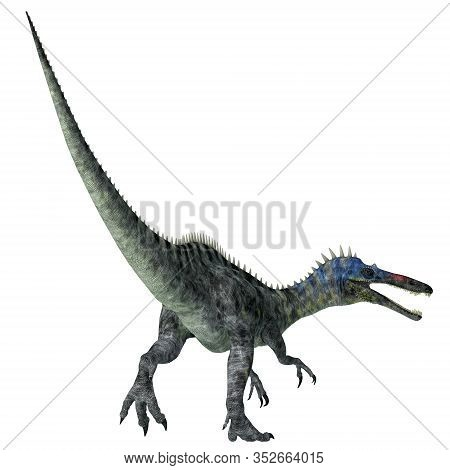 Suchomimus Dinosaur Tail 3d Illustration - Suchomimus Was A Theropod Carnivorous Dinosaur That Lived