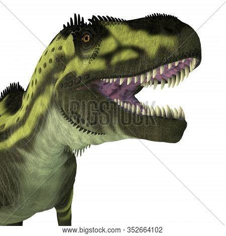 Torvosaurus Dinosaur Head 3d Illustration - Torvosaurus Was A Carnivorous Theropod Dinosaur That Liv