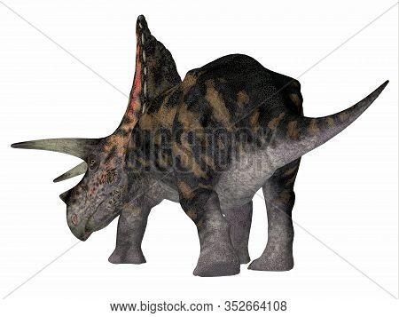 Torosaurus Dinosaur Tail 3d Illustration - Torosaurus Was A Horned Herbivorous Ceratopsian Dinosaur